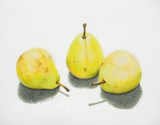 Monroe's Orchard Pears