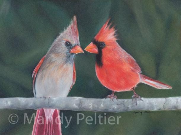 CardinalsWatermark